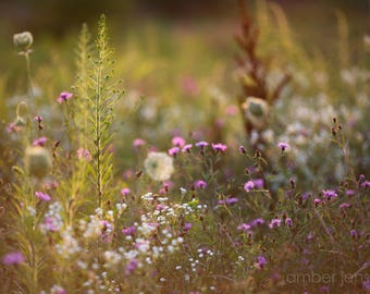 Wildflower Meadow, Canvas Art, Fine Art Photography, Modern Decor, Trending, Nature Photography, Wildflowers, Modern Home