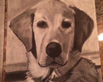 "9"" x 12"" Custom Charcoal Pet Portraits"