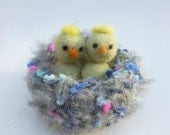 Baby chick in a nest bird nest nature table