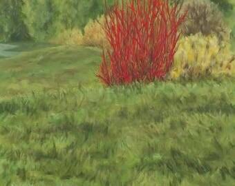 Landscape Red Dogwood Bush Original Oil Painting Wyoming Fields Sky Art Paintring Large California Artist by Debra Alouise