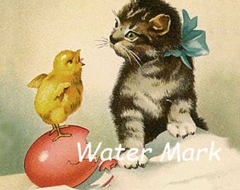Digital Download INSTANT*Cat  baby chick *O darling