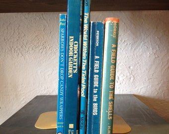 Naturalist's Collection in Blue Book Decor