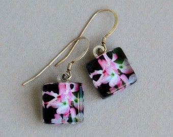 In the Pink Earrings - Pink Dogwood - Photo Earrings - Pink Flower Earrings - Nature Photography