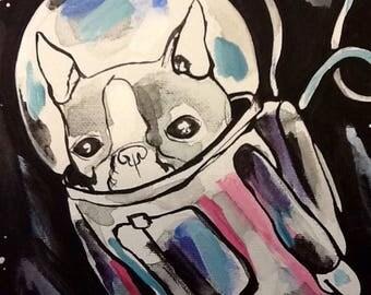 Boston Terrier (intergalactic)