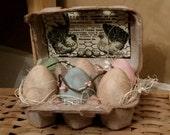 Primitive Eggs in Carton - Accent farmhouse decor, primitive shelf sitter, pip berries. Rustic Easter decor