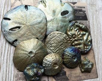 265. Raku Wondrousstrange Urchin Seastar Sand Dollar   Inspired Cabochons Blue Silver Rust Gold Magenta  Collection