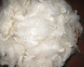 Very Soft White Alpaca Fiber, Washed Alpaca Fine-count, 3-ounces, Baby Approved, 3-inch Staple, Spinning Fiber, Approx. 17-Micron, My Farm