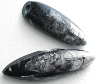 2 Drilled Orthoceras Fossils, Long Black & Gray Cephalopod Stone Beads, Destash Pendants for Wire Wrapping