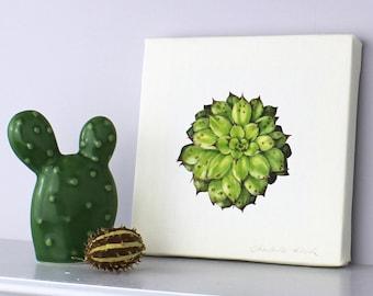Succulent Art-Sempervivum Canvas-Succulent Illustration-gift for succulent fan-art for living room-gift for gardener-botanical print-Art