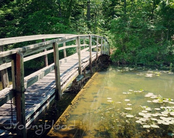 Photograph: Old Bridge over Pond Nature Photography 8x10 Rural Arkansas