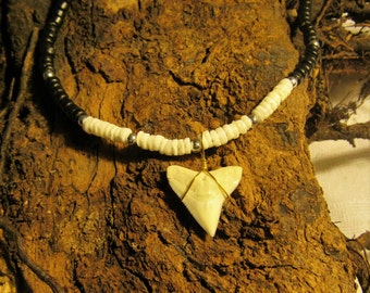 Wholesale 1 / 6 / 12 - Bull Shark tooth on necklace.