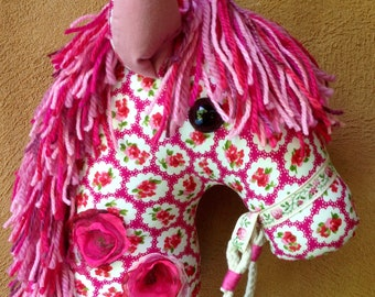 RASBERRY PIE - Hobby Horse