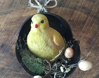 Chick In A Little Scoop