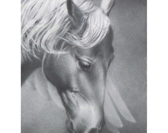 Pegasus  Original Horse Drawing