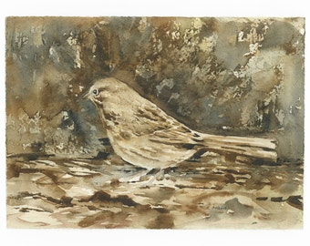 Original  Watercolor Painting of a Foraging Sparrow 5 x 7