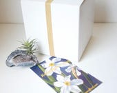GIft Wrap / Gift Box Upgrade, Mother's Day, Father's Day, Birthday, Graduation, Thank You