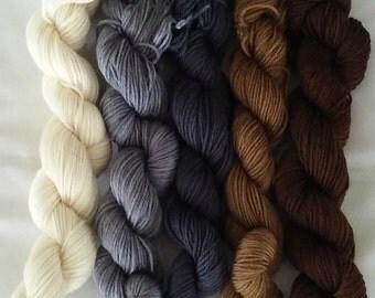 "Hand Dyed Gradient Set Mini Skeins ""Pebbles""  SW Merino/Nylon  100Grams"