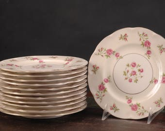 Vintage Theodore Haviland, Delaware Salad Plates, Set of 6