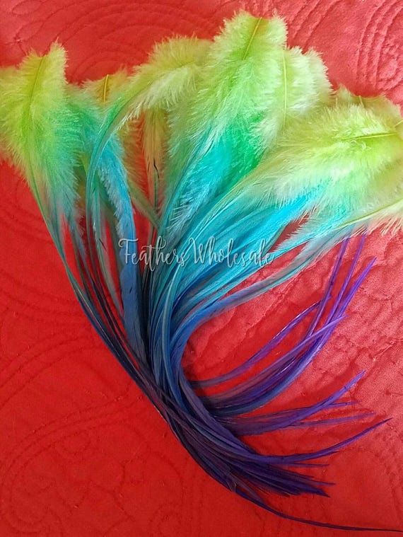Rainbow Rooster Feathers Lime Blue Indigo Long Feathers for Craft Lime Green Turquoise Craft Feathers
