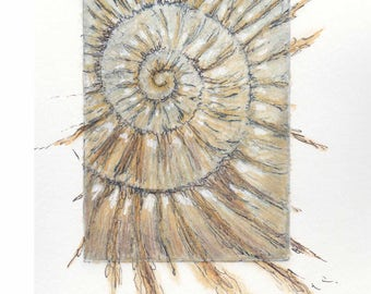 Original ammonite etching no.68 with mixed media jurassic Dorset coast fossil spiral fossil ammonites golden section