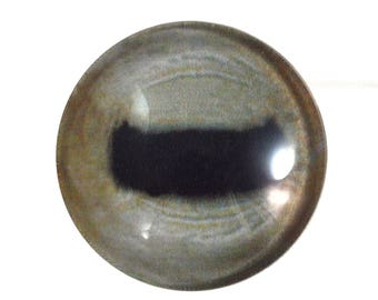 30mm Pale Glass Goat Eye for Animal Pendant Jewelry Making or Taxidermy Doll Eyeball Flatback Handmade Cabochon