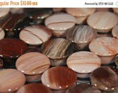 "ON SALE Single Flared Petrified Wood Plugs - 8g, 6g, 4g, 2g, 0g, 00g, 7/16"", 1/2"", 9/16"", 5/8"", 3/4"", 7/8, 1"""