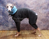 ONE only - Italian Greyhound SMALL shorter leg ( see measurements) Charcoal Cuffless Jammies with Slate Blue Bear Print Jersey lined Snood