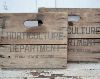 Vintage Wooden Crate Panels Horticulture Dept Pennsylvania State College Black Lettering Weathered Wood Sign Wall Decor Graduation Present