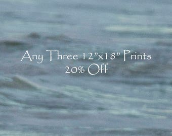 "20% Off - Select Any Three 12""x18"" fine art horse prints -Prints - Photographs - Discount"