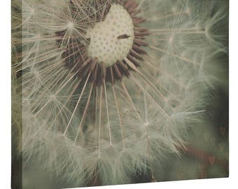 Dreamy Dandelion Wall Canvas. Floral Nature Photography. Make A Wish Kids Bedroom Decor. Whimsical Shabby Chic Spring Summer Home Decor