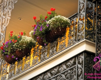 New Orleans Photography, French Quarter Balcony, Red, White and Purple Flowers, NOLA Photograph, Cast Iron, Architecture, Royal Street