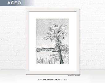 Palmetto Landscape Pencil Drawing, Original ACEO Drawing, Palm Tree Drawing, Landscape Miniature Drawing, ACEO ATC Ooak Original, Palmetto