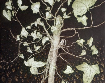 Ivy etching, limited edition