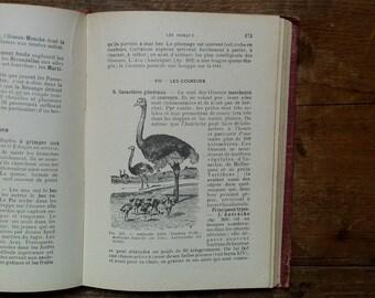 """French vintage sciences book """"Sciences naturelles du brevet élémentaire"""""""