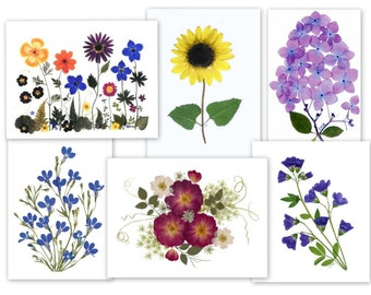 Pressed Flower Cards, 6 assorted notecards, - #060