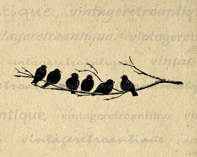 Printable Bird Art Digital Image Birds on Tree Branch Graphic Bird Artwork Digital Download Antique Clip Art Jpg Png Eps HQ 300dpi No.3698