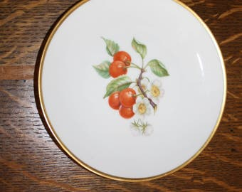 Hutshenreuther Bavaria China Plate with Cherries and Blossoms
