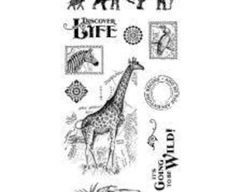 Graphic 45 SAFARI ADVENTURE 2 Cling Stamps IC0363S cc55