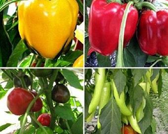 Sweet Pepper Plant Sampler, 6 Plants