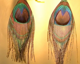 Peacock Earrings, Peacock Jewelry, Feather Earrings, Real Feathers, Peacock Feathers, Peacock Dangles, Sterling Ear Wires, Trimmed or Not