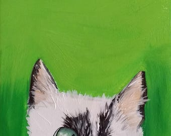 Peek-a-Boo Cat