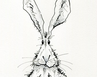 Original pen and ink hare drawings