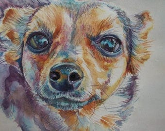 Cane ad acquerello, cane dipinto,  Ritratto animale personalizzato  \   watercolor  dog, painting dog, custom pet portrait