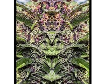Fleece Blanket: Marijuana Blanket in Purple Goo Marijuana Print, Bed Blanket, Cannabis Blanket- MADE TO ORDER