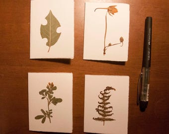 Set of 4 tickets. Card stock with pressed flowers, dried flowers. Greeting card with dried flowers.