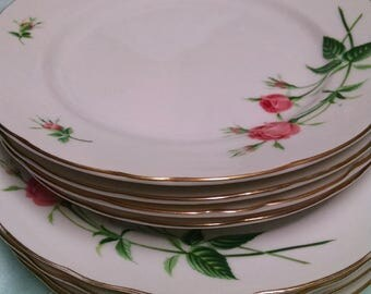 Shabby chic rose floral dinner plates and salad plates/gold edged, set of 4 each