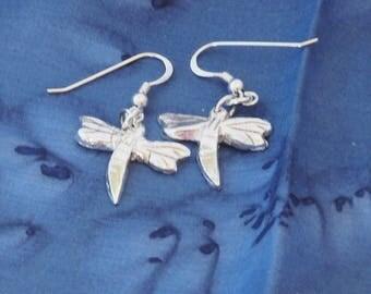 Dragonfly ear-rings