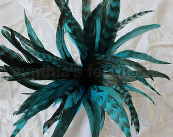 "50+ Turquoise 6-8"" CHINCHILLA COQUE rooster Feathers, fly tying, Cynthia's Feathers SKU 7D31"