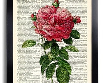 Flower Rose Art Print Vintage Book Print Recycled Vintage Dictionary Page Collage Repurposed Book Upcycled Dictionary 084