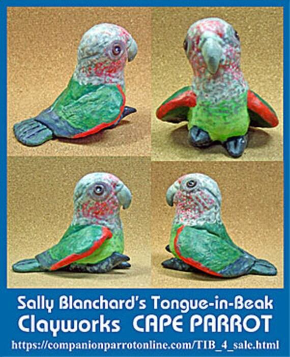 CAPE PARROT Tongue-in-Beak Mini-gem by Sally Blanchard